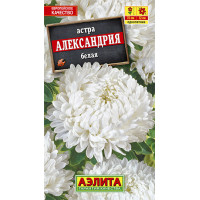 Астра Александрия белая | семена