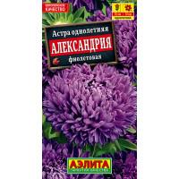 Астра Александрия фиолетовая | семена