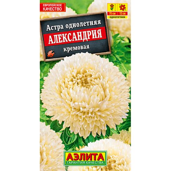 Астра Александрия кремовая | семена