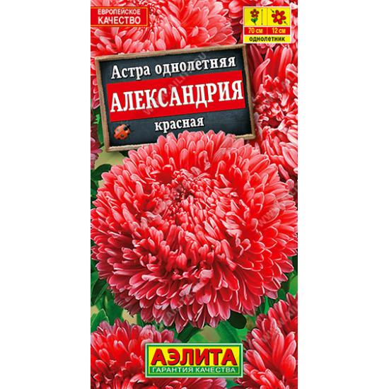 Астра Александрия красная | семена