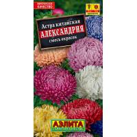 Астра Александрия, смесь сортов | семена