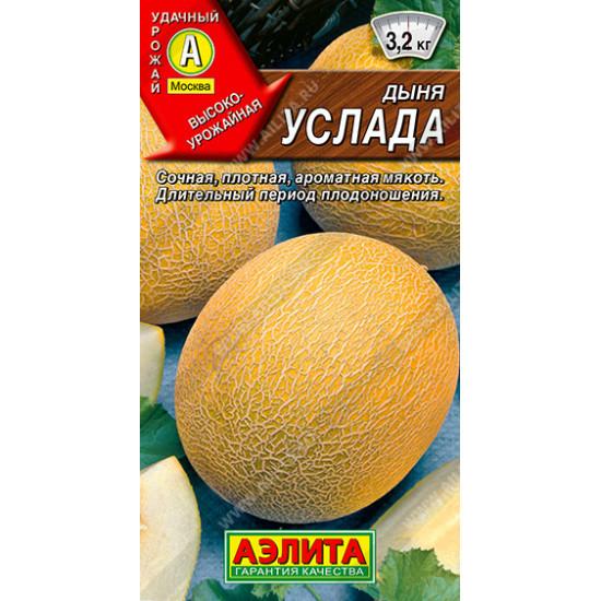 Дыня Услада | Семена