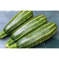 Кабачок Зебра цуккини Арт. 5117 | Семена