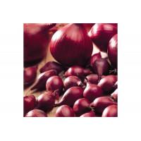 Лук-севок Ред Барон | Семена