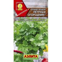 Кориандр Петруша овощной  | Семена